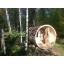 torusaunad-saun-saunad-kümblustünnid-torusaun REY 7-sau-terrassiga saun.jpg