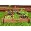 taimelavad-taimeriiulid-taimelavade müük-taimeriiulite müük-taimelava restiga suurem-gardening.JPG