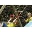 trapets-kiik-kiiged-kiikede müük-mänguväljakud-mänguväljakute müük-mängumajad-mängumajade müük-liumäed.jpg