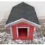 koerakuut-koerakuudid-koerakuutide müük-JACKY-dog houses-inpuit-koer-koerad-lemmikloomad-red 2.jpg