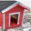 koerakuut-koerakuudid-koerakuutide müük-JACKY-dog houses-inpuit-koer-koerad-lemmikloomad-red 8 (2).jpg
